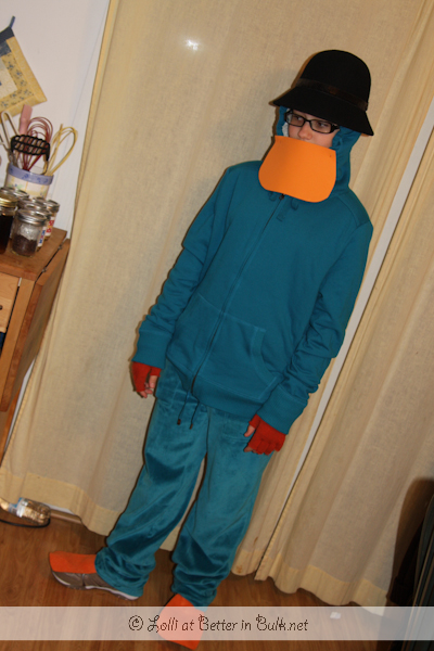 Perry the Platypus costume