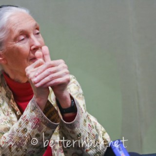 Jane Goodall shows bloggers an injury she sustained while working with chimps