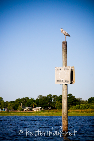 Makinson Island - Lake Tohopekaliga Kissimmee, FL