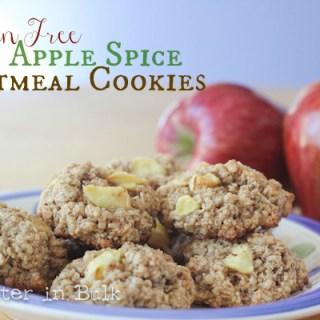 Gluten Free apple spice oatmeal cookies