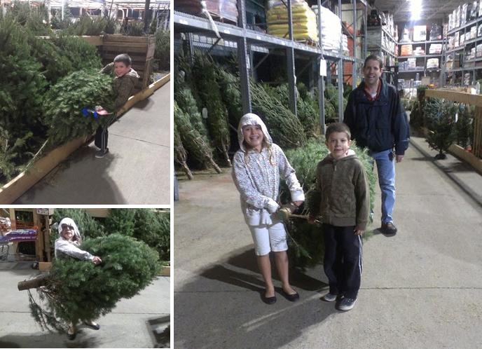 home-depot-tree