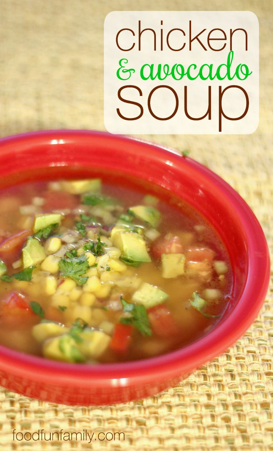 Looking for a tasty variation on the classic chicken noodle soup? Trade your noodles for toritillas and dig into a bowl of this chicken and avocado soup. Full of fresh, vibrant flavors!