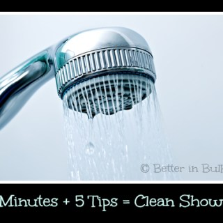 5 minutes 5 tips clean shower