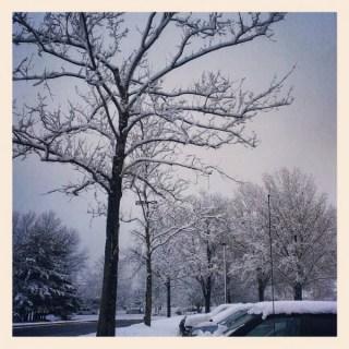 A Snowy Start to Spring Break #WordlessWednesday