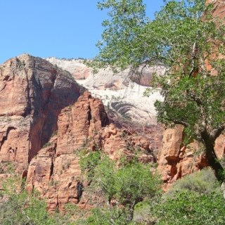A Peek at Our Day at Zion National Park #WW