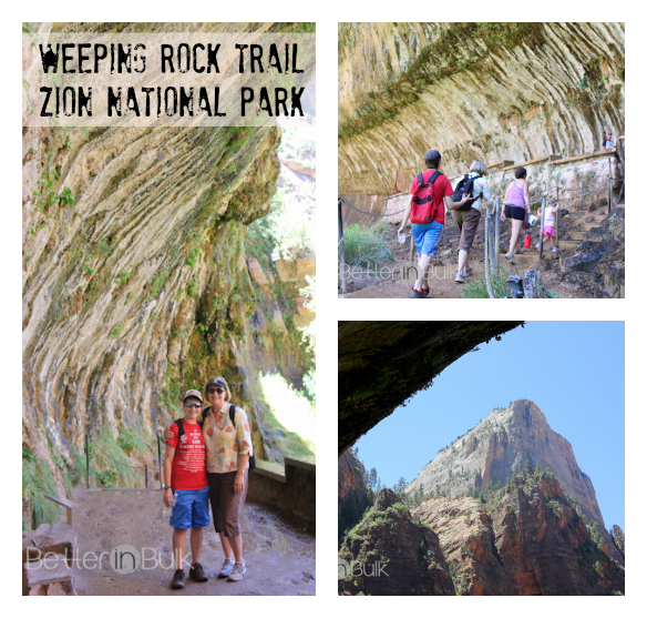 Zion National Park Weeping Rock Trail Shuttle Riverside Walk