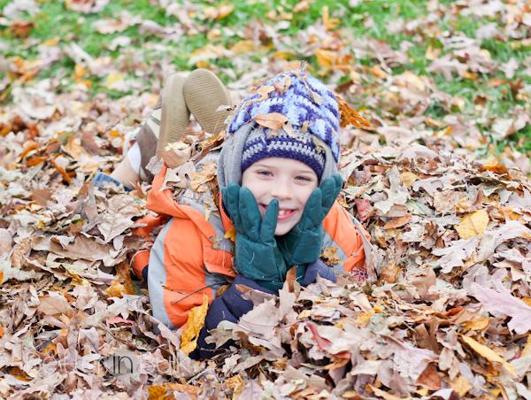 leaves-1-2