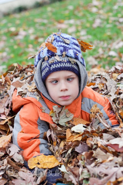 leaves-2-2
