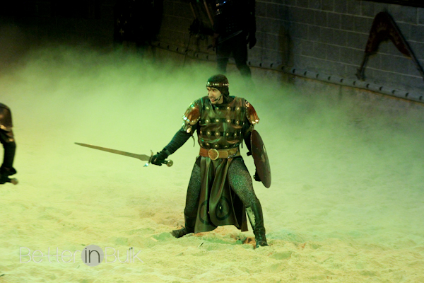 medieval times-12