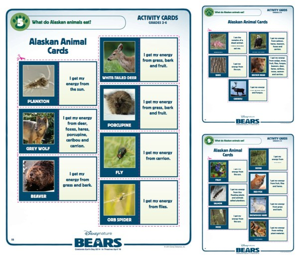 Disneynature Bears activity sheets