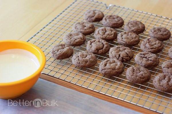 white chocolate dipped ginger cookies