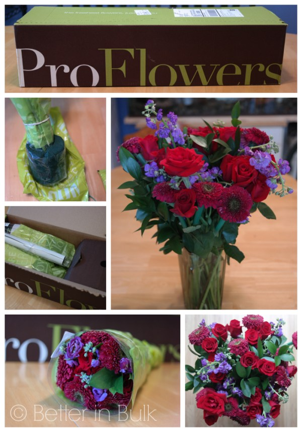roflowers The Best Of Me Collage