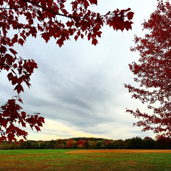 Fall in Maryland