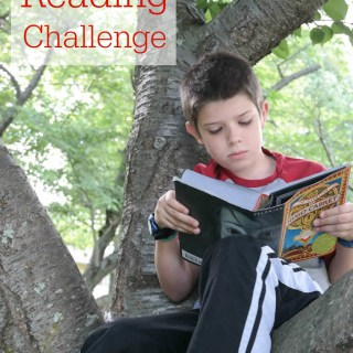 Power Up & Read: Summer Reading Challenge 2015 #SummerReading