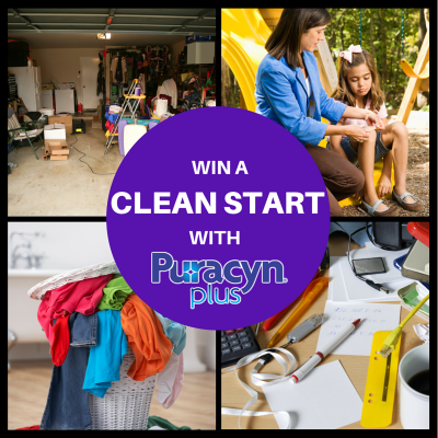 Puracyn Plus Clean First for the Best Finish