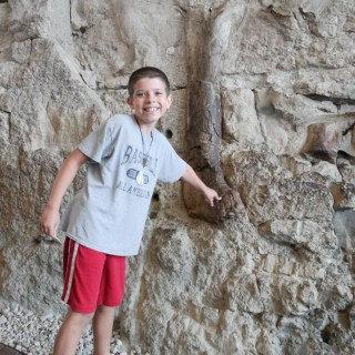 Dinosaur National Monument in Vernal Utah by Better in Bulk