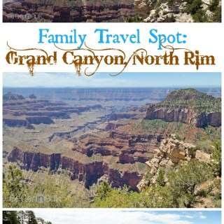 Family travel spot: Grand Canyon North Rim by Better in Bulk