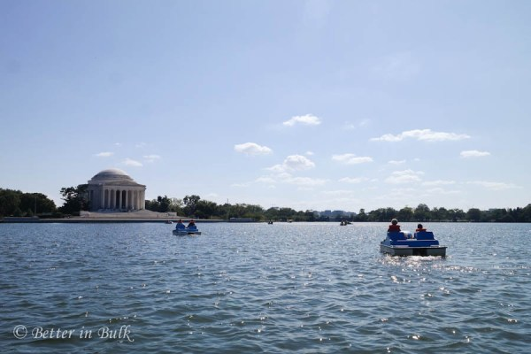 Tidal Basin Paddle Boats Washington DC