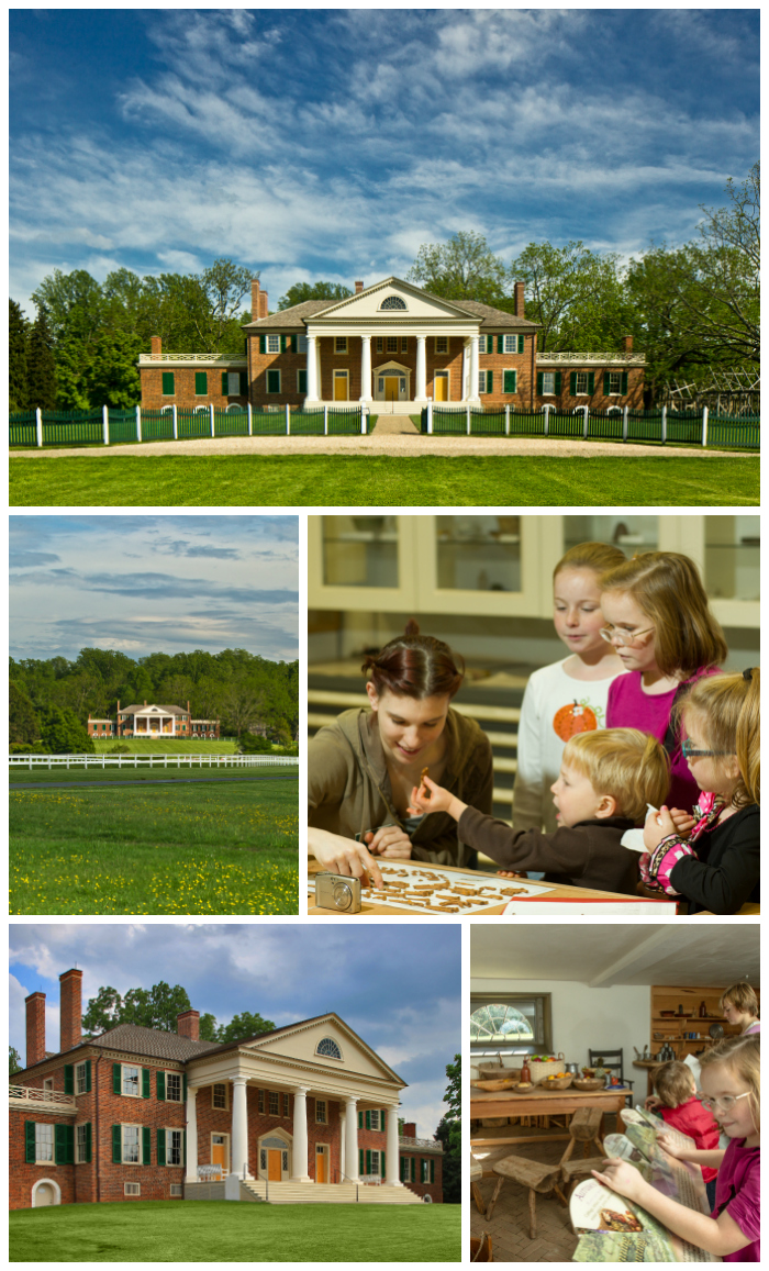 Montpelier, home of James Madison, fourth President of the United States. FInd out about touring the mansion and all you can do and see at Montpelier!
