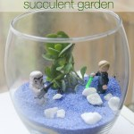Diy Star Wars Terrarium Succulent Garden