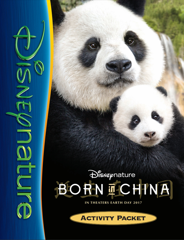 Born In Chine Activity Packet