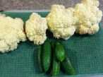 Last of the Cauliflower and first of the Cucumbers