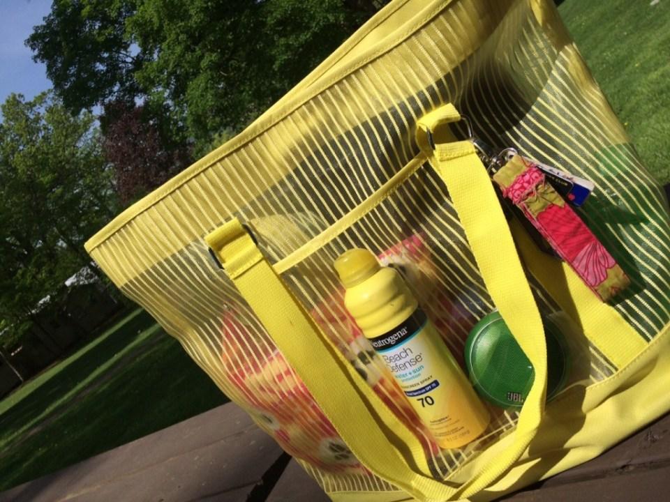 Erin's Ultimte Summer Go Anywhere Bag
