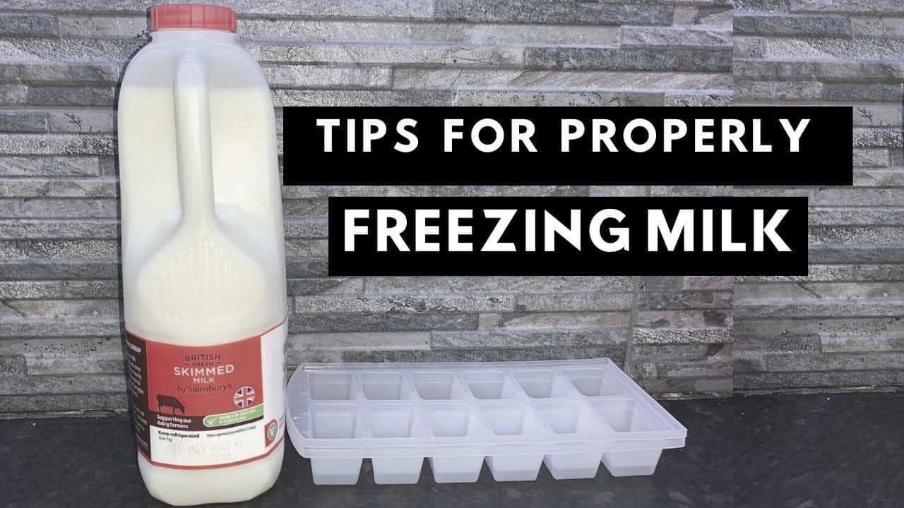 How To Properly Freeze Milk In Ice Cube Trays Or In A ...
