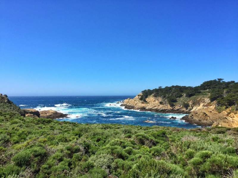 Foodicles Point Lobos 1
