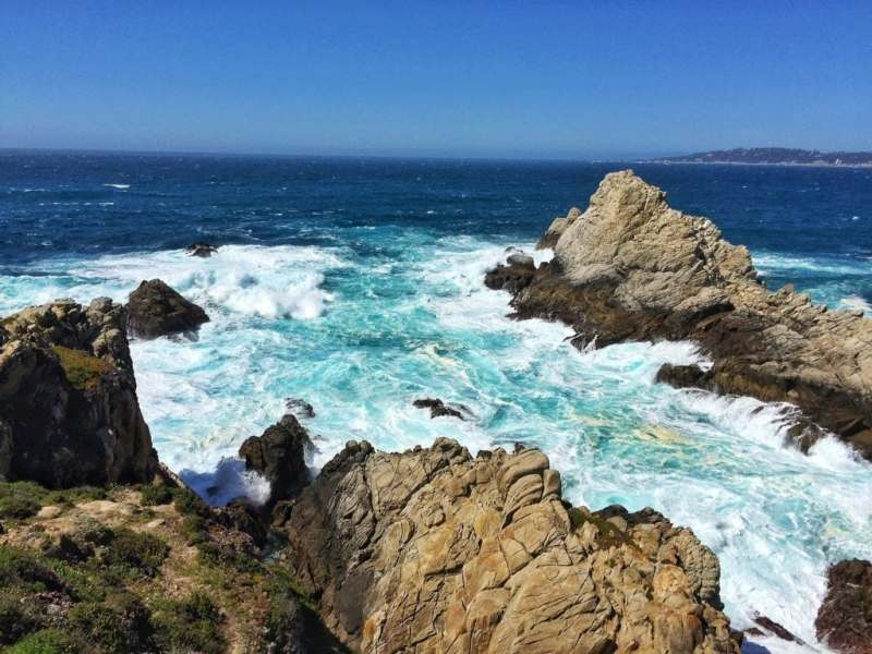 Foodicles Point Lobos 5