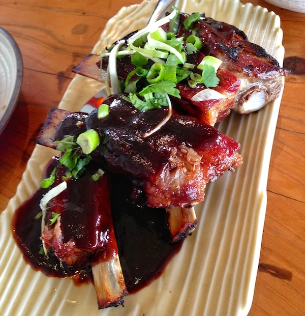Slanted Door Ribs