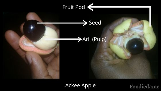 Ackee-Fruit