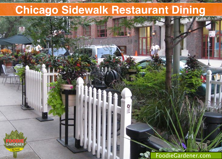Foodie Gardener spied an intimate dining spot in a busy downtown Chicago street. Add picket fence and flowers and sit down and dine!