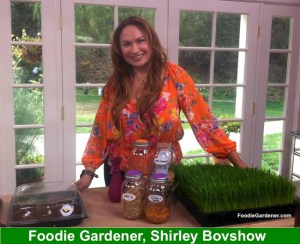 edible garden designer, Shirley Bovshow, known as Foodie Gardener on the Home and Family Show, Hallmark Channel