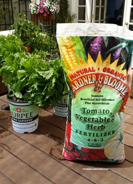 burpee home gardens gardner and bloome tomato vegetable herb fertilizer foodie gardener
