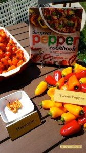 melissas fresh peppers featured on home and family show with-foodie gardener shirley bovshow edible garden designer and garden expert