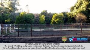 FOODIE GARDENER COMMUNITY GARDEN fence