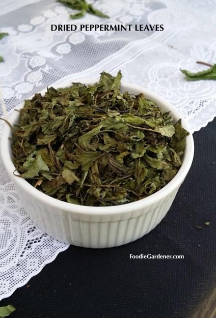 dried peppermint leaves foodie gardener blog