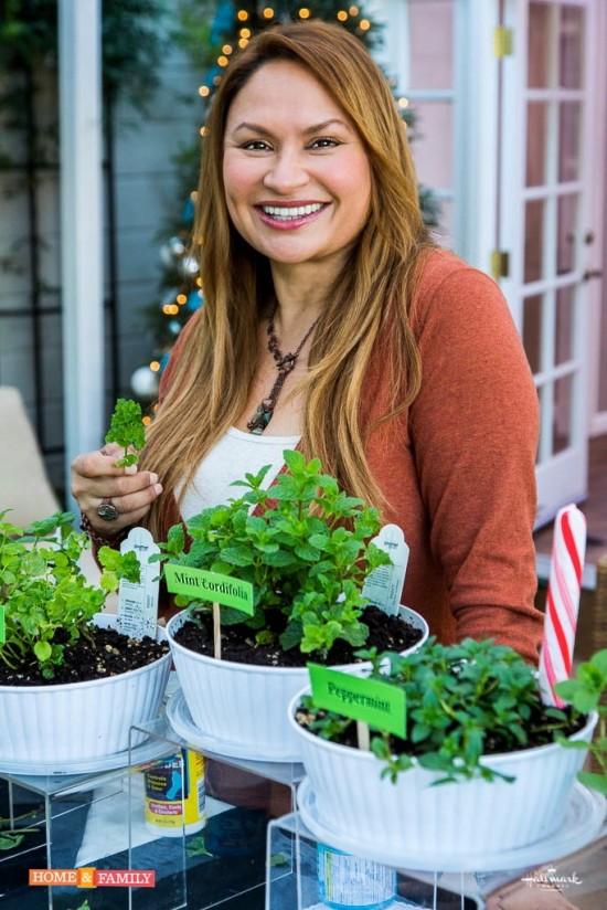 shirley bovshow mint 101 home and family show hallmark garden designer edible garden expert
