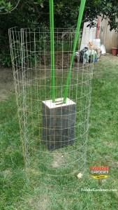 roll galvanized metal landscape fencing 4 by 2 grid foodie gardener blog