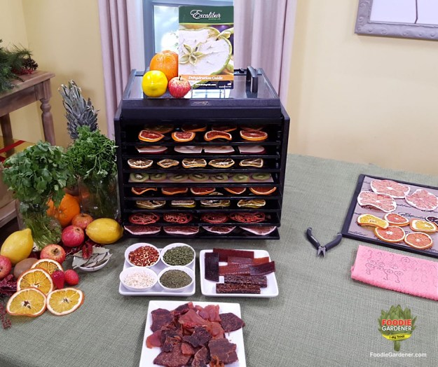 Excalibur-9-tray-dehydrator-with-dehydrated-fruit-meat-jerky-fruit-rollups-herbs-dried-spices-foodie-gardener-blog