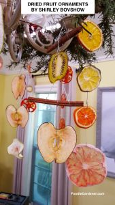 dried-fruit-ornaments-apples-cinnamon-sticks-pomelo-limes-kiwi-tomatoes-green-apples-designed-by-shirley-bovshow-foodie-gardener