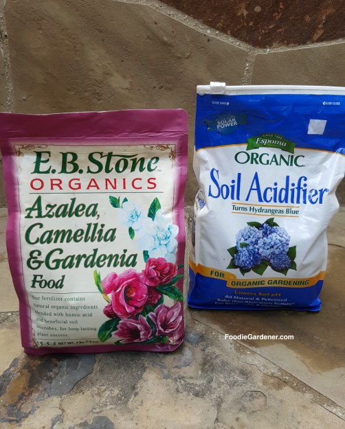 eb-stone-organic-azalea-camellia-gardenia-fertilizer-espoma-organic-soil-acidifier-for-acid-loving-plants-foodie-gardener-blog