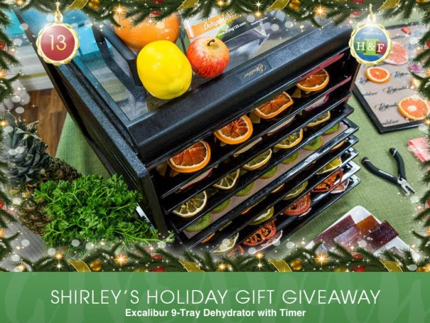 excalibur-9-tray-dehydrator-with-timer-shirley-bovshow-giveaway-1