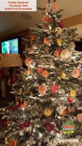 flocked-noble-fir-christmas-tree-with-dried-fruit-ornaments-pomelo-citrus-orange-limes-grapefruit-tomatoes-apples-Shirley-bovshow-edible-garden-designer-foodie-gardener