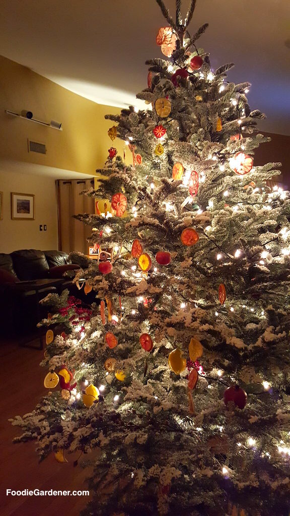flocked-noble-fir-christmas-tree-with-natural-dehydrated-citrus-fruit-ornaments-by-shirley-bovshow-foodie-gardener-blog