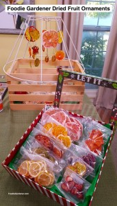 lamp-frame-used-for-crafting-project-box-for-storing-fragile-dried-fruit-ornaments-foodie-gardener-blog