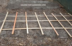 square-foot-gardening-grid-on-raised-garden-bed-foodie-gardener-blog