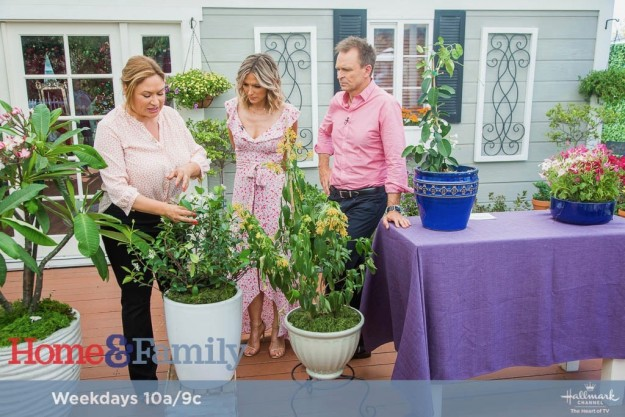 foodie gardener shirley bovshow with phil keoghan, host of the amazing race as seen on the home and family show on the hallmark channel