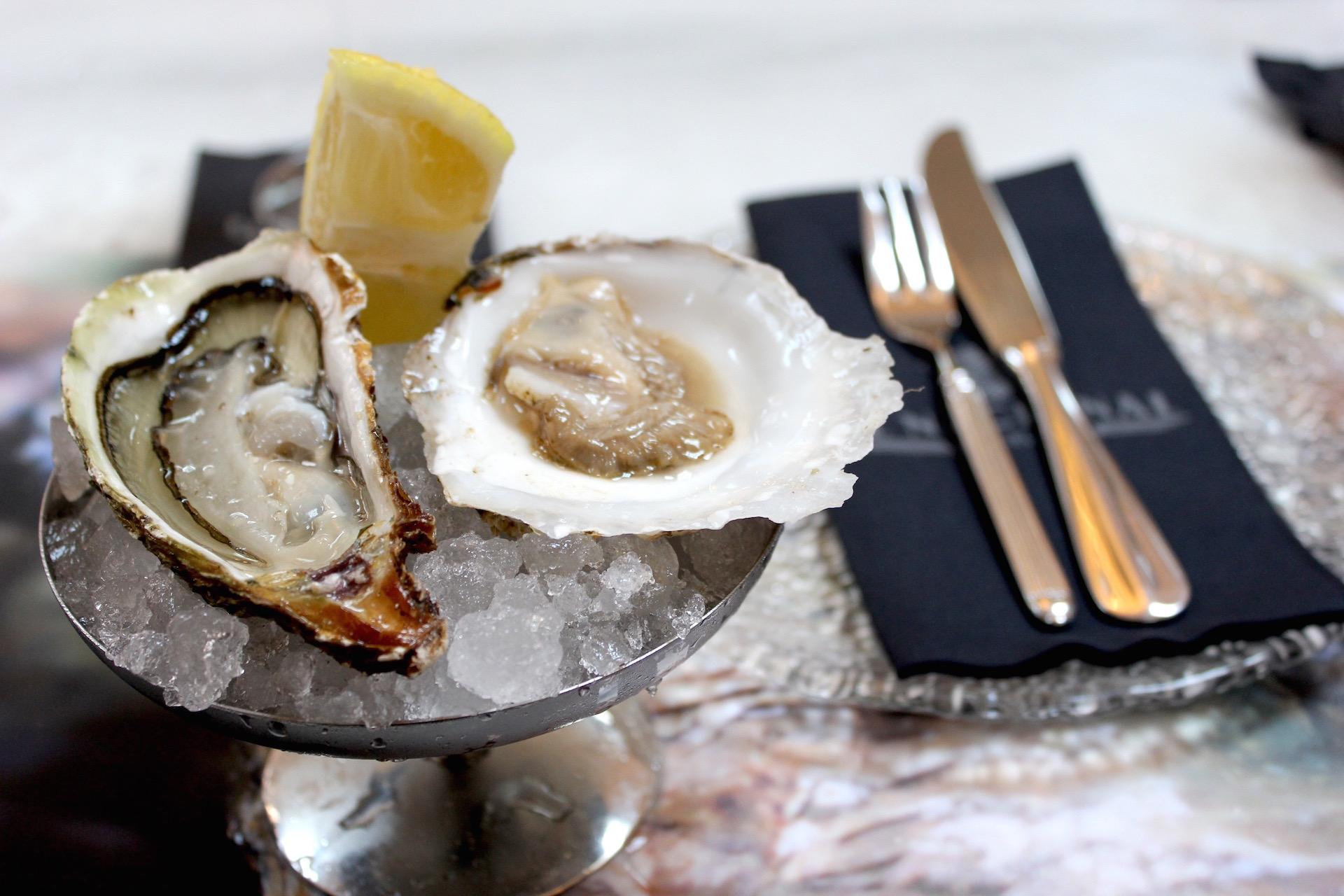 Oysters Wanderbeak Gaudi Gourmet Tour